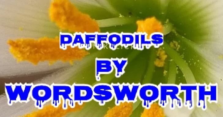 Top Daffodils Poem In English Pic805