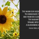 Top English Poem About Flowers Image321