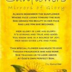 Top Famous Poems About Sunflowers Image213