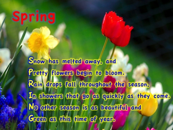 Top Garden Poems Funny Image701