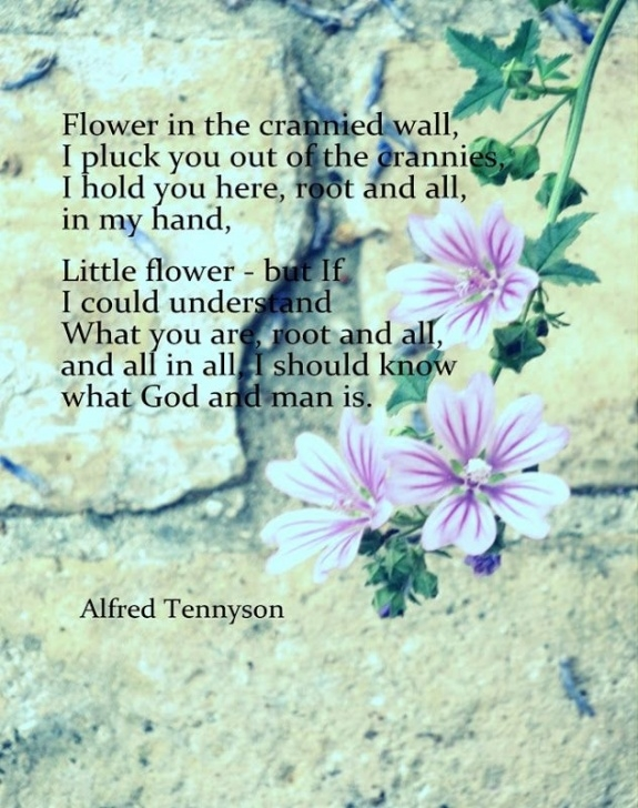 Top Poems About Flowers And Love Picture948