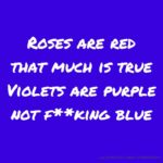 Top Roses Are Red Violets Are Blue Poem Love Photo318