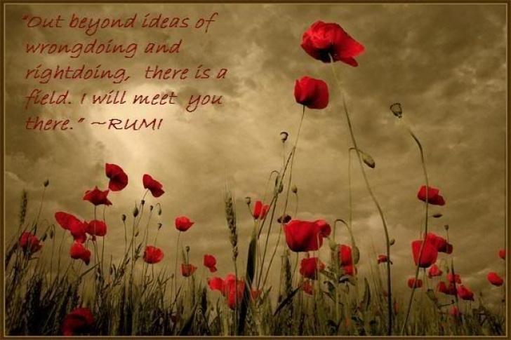 Top Rumi Garden Poem Pic343