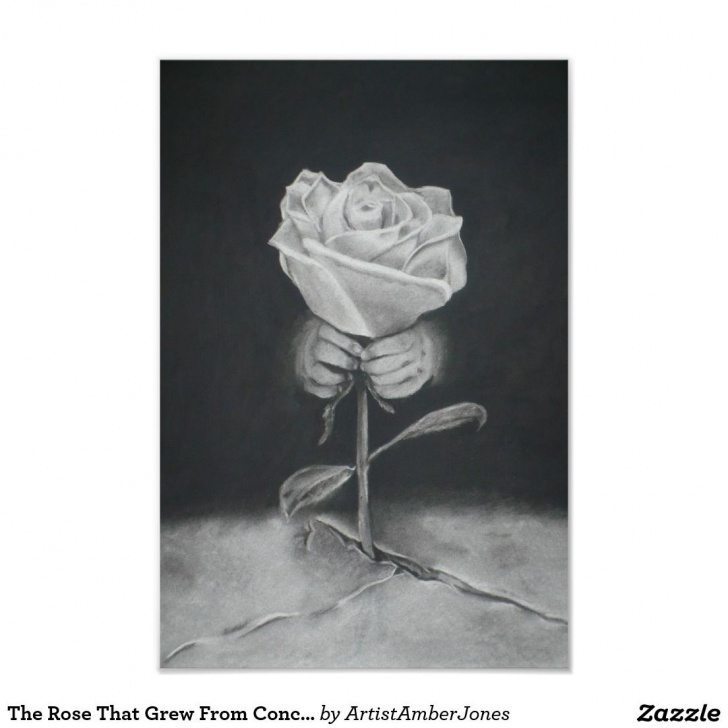 Top The Flower That Grew From Concrete Pic649