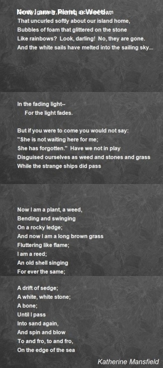 Top The Meanest Flower That Blows Poem Image823