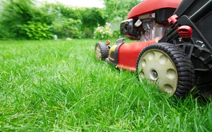 Top The Mower Against Gardens Image692